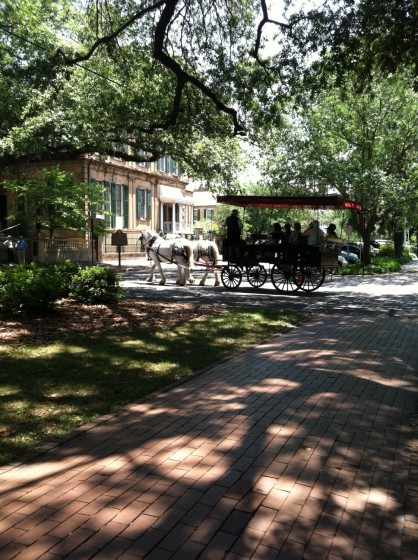 A horse and carriage rounds a square in Savannah.