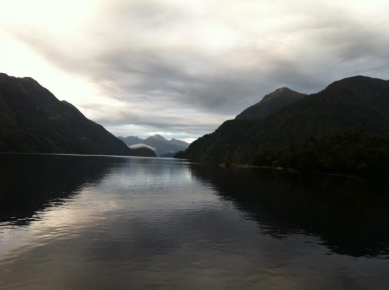 Doubtful Sound Beauty
