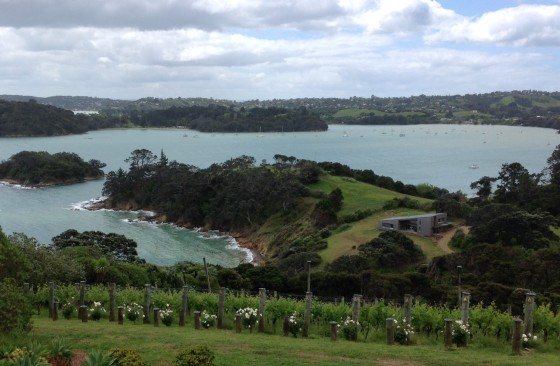 This was the view from our lunch table at Te Whau, Waiheke Island. Photos by Jerry Mayfield