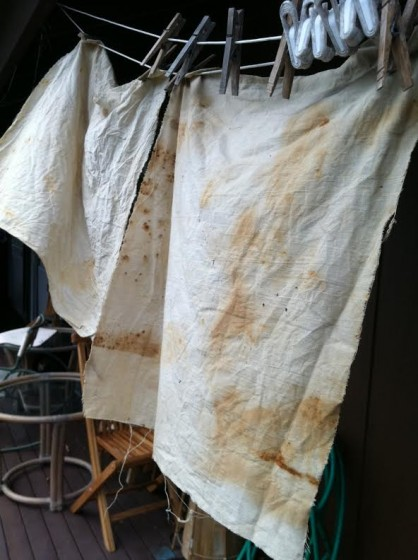 Soem recent rust dyeing that was less than successful.