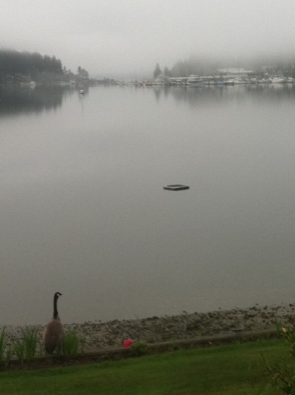 The view of Gig Harbor from our room on a misty morning.