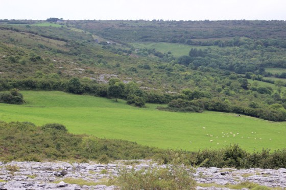 A view of the Burren we experienced while painting.